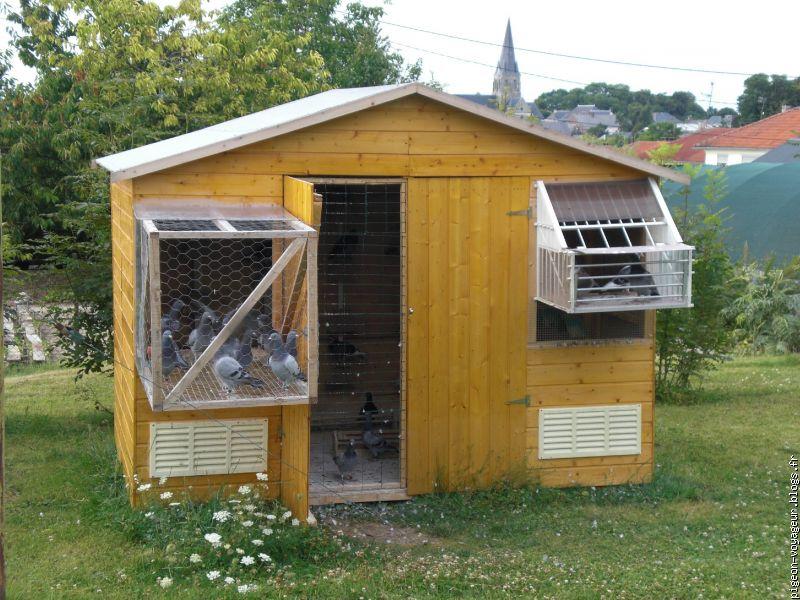 pigeon voyageur le blog multim dia 100 facile et gratuit. Black Bedroom Furniture Sets. Home Design Ideas